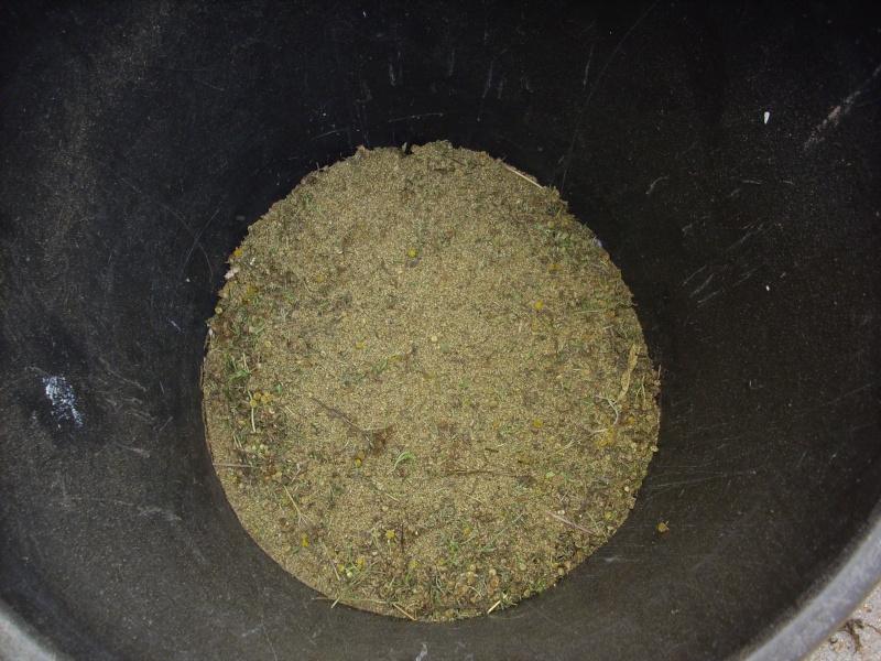 Ma façon de récolter les graines de tanaisie© Img_0097