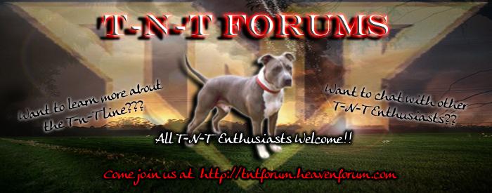 T-N-T Forums