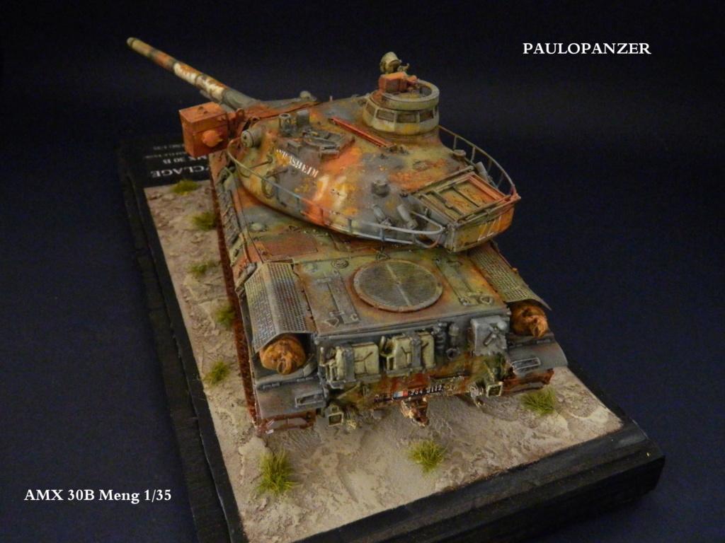 AMX 30 b Meng 1/35  Dscn5311