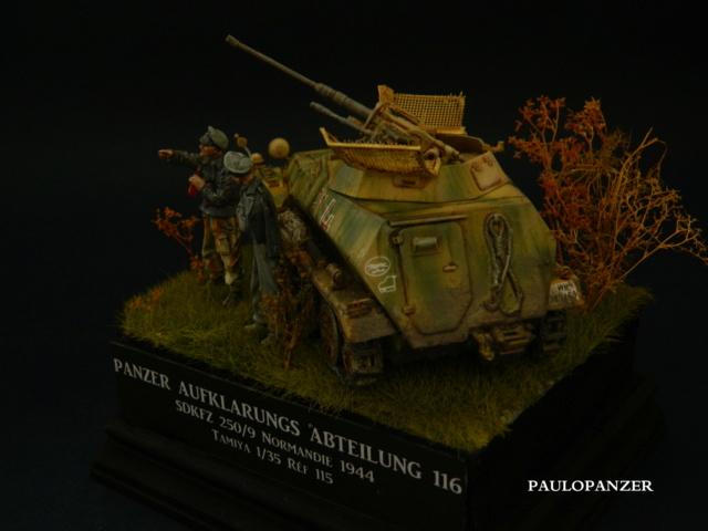 [PAULO] SDKFZ 250/9 Tamiya 1/35  (GB terminé) Dscn5913