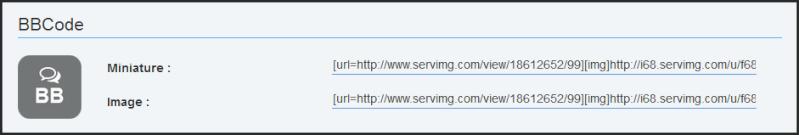 Nouveauté Servimg: Le multiupload, le Drag & Drop et l'insertion directe dans les messages sont enfin arrivés !  - Page 2 09-03-10