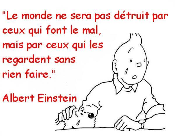 humour - Page 40 10262210