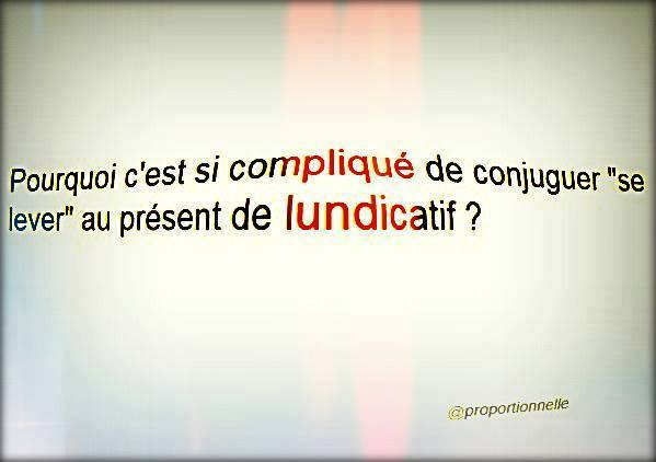 humour - Page 38 10985210