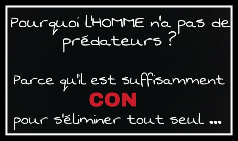 humour - Page 40 12032110
