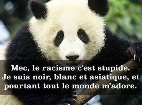 humour - Page 40 12039610