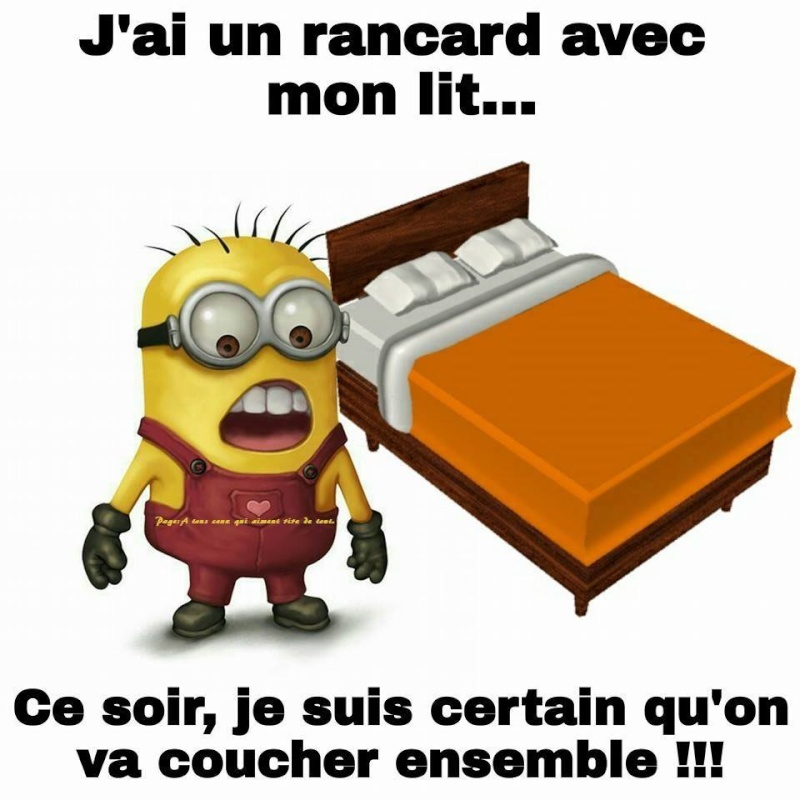 humour - Page 38 12063510