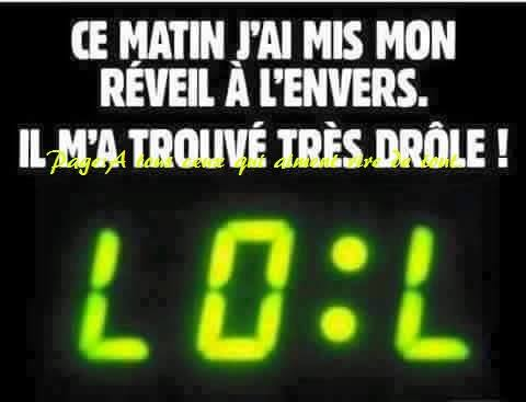 humour - Page 37 12832312