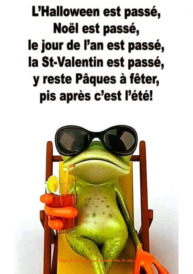 humour - Page 37 16186710