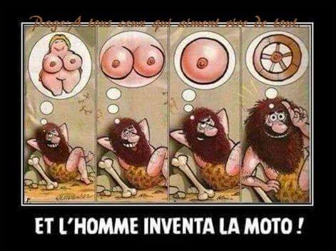humour - Page 37 56445210