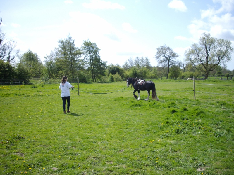 Une photo de vous et votre cheval - Page 3 Imgp0120