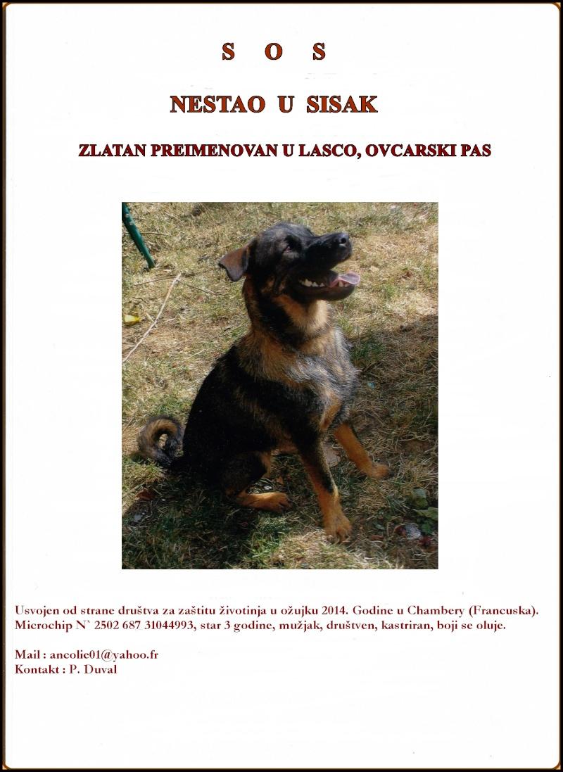 SOS perdu Zlatan renommé Lasco en Croatie Affich11