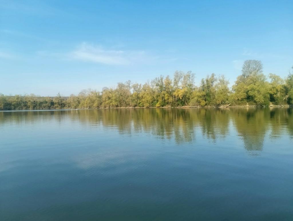 Sur un lac, en Normandie Img_2014