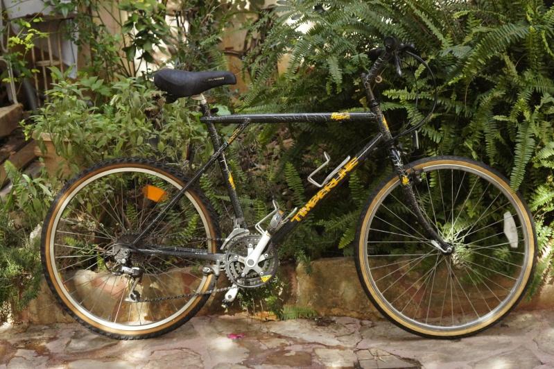GT Timberline 1988 Dsc02120