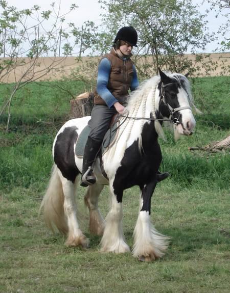 Une photo de vous et votre cheval - Page 2 Dsc06910
