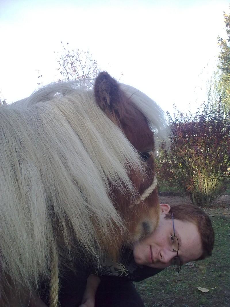mes bêtes - Page 6 27102012