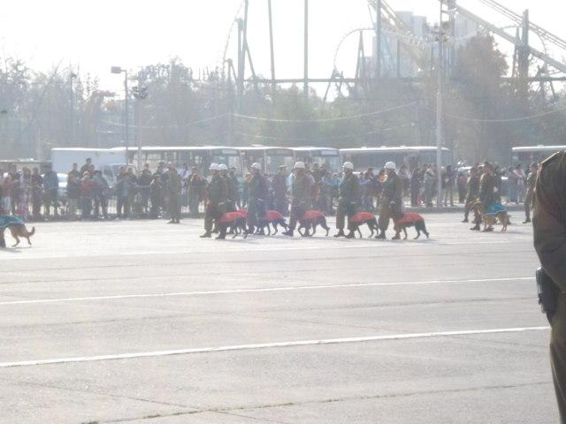 Parada Militar Chile 2009 (Preparatoria) Dsc04549