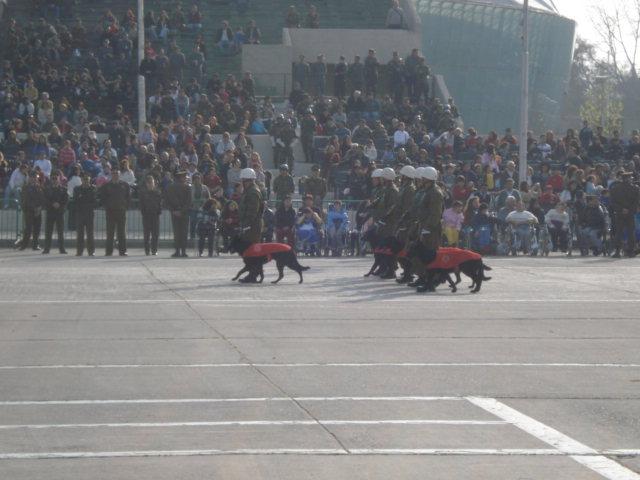 Parada Militar Chile 2009 (Preparatoria) Dsc04551