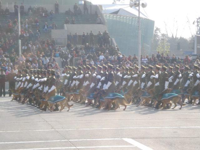 Parada Militar Chile 2009 (Preparatoria) Dsc04552