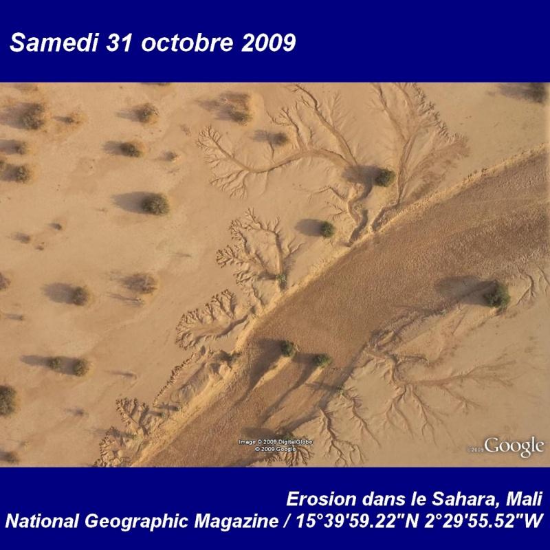 Octobre 2009 (éphéméride) 10_31_10