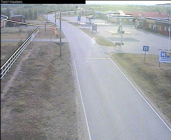 [Finlande] - Näätämö : du soleil de minuit à la nuit polaire 25_06_10