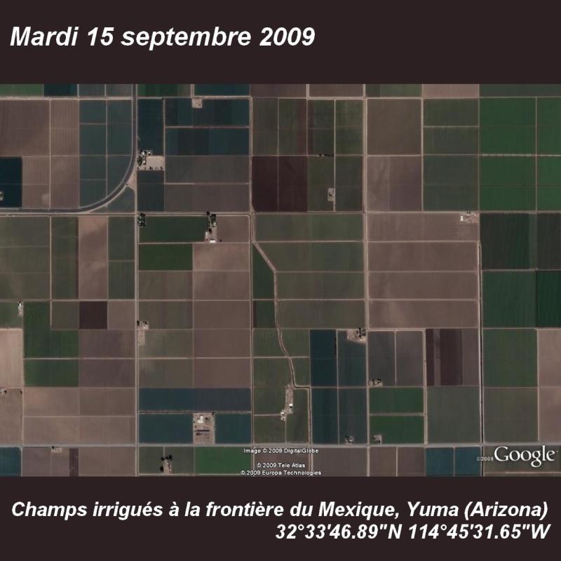 Septembre 2009 (éphéméride) Champs10