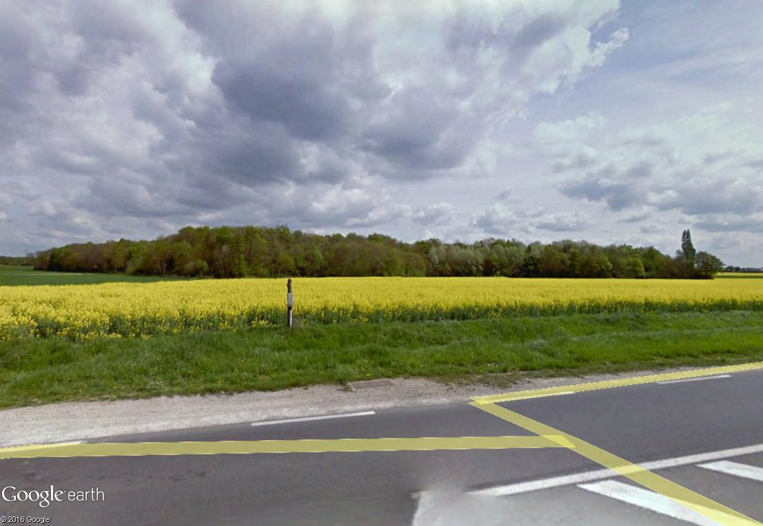 STREET VIEW : 2 sens de circulation = 2 saisons différentes vues de la Google Car ! [A la chasse !] - Page 2 Essonn12