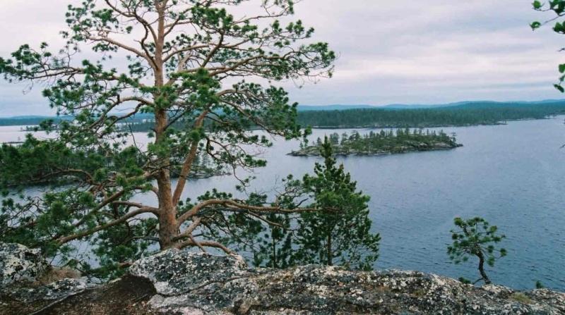 [Finlande] - Näätämö : du soleil de minuit à la nuit polaire Inari_11