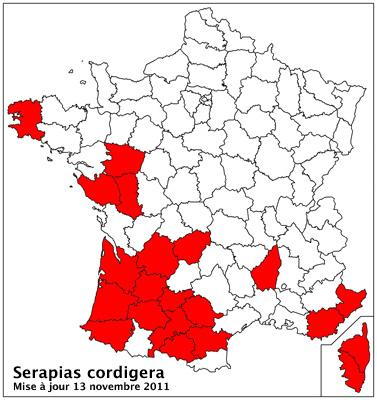 Serapias cordigera ( Sérapias en coeur ) Carto_10