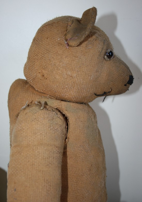 Un ours ancien... Img_8711