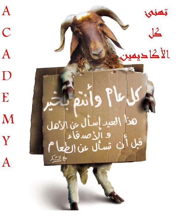 أجازه أكاديميه..بسام مريه 9f5c8310