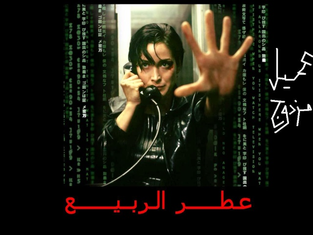 قصة الأكاديميه..بقلم: بسام مريه.....قريبا Matrix11
