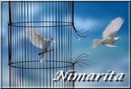 600 - SENATEUR - MODERATEUR : Pipelon Oiseau10