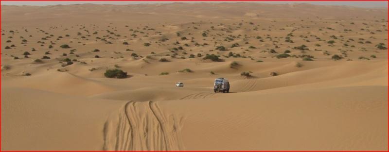 créer un forum : Le Désert en IVECO 4x4 - Portail Libye11