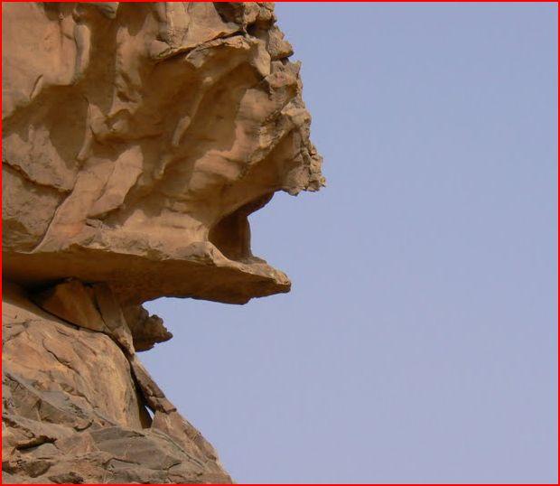LA BONNE AGENCE POUR LA LIBYE  :  . Poisso10