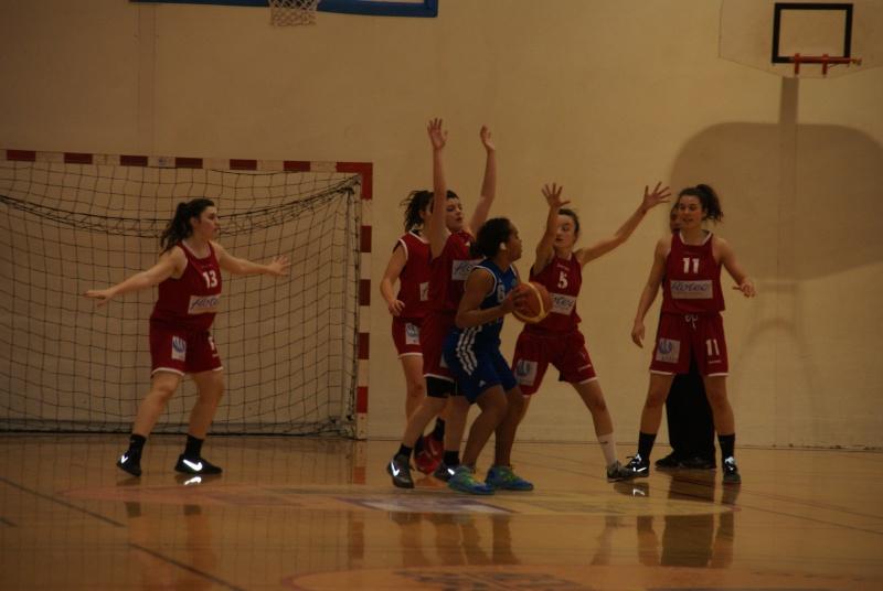 le SAC  et le Basket  - Page 5 Dsc02611