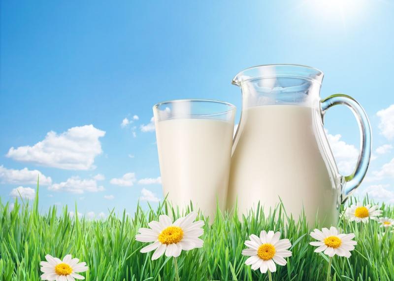 ليش الحليب لونه أبيض؟ Image10