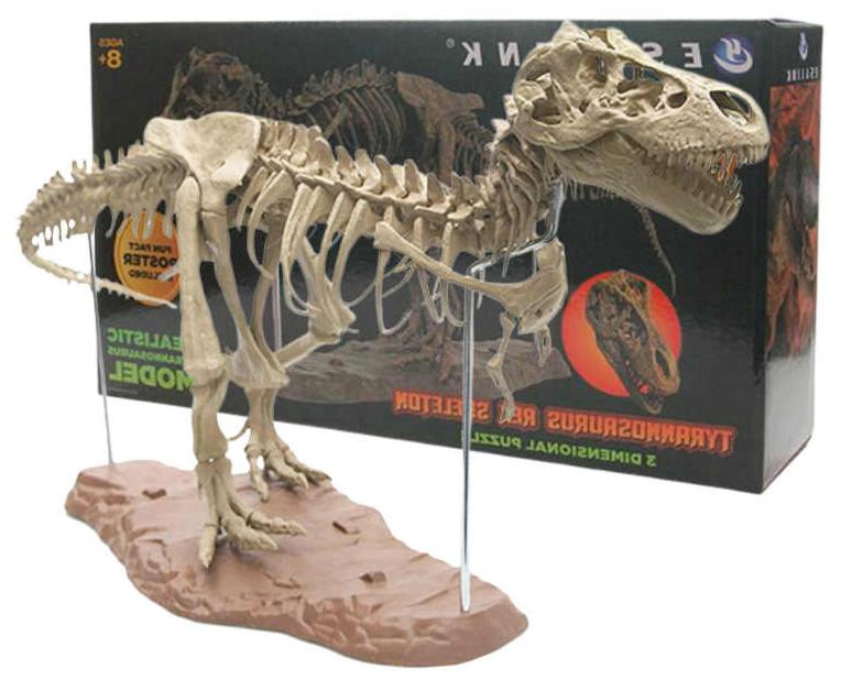 FIGURA - Esqueleto de Tyrannosaurus rex - Black beauty 2019-h11