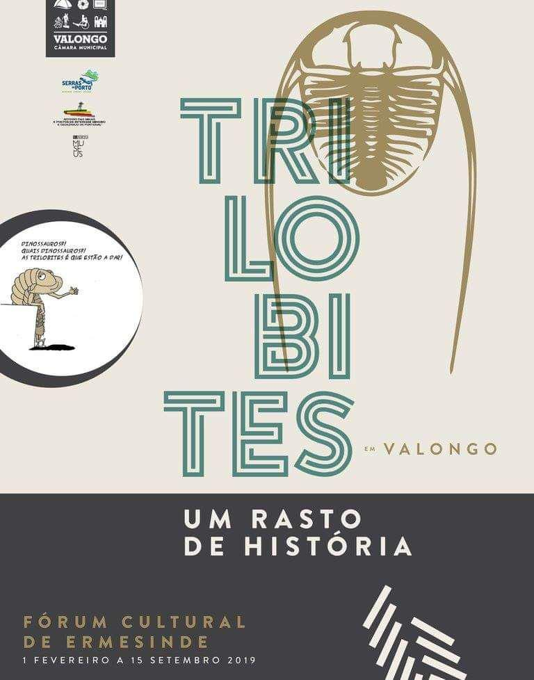 Trilobites em Valongo: um rasto de história. Photo_13