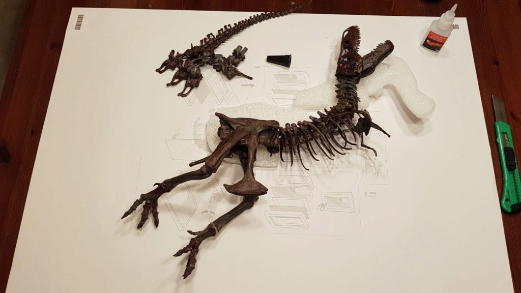 FIGURA - Esqueleto de Tyrannosaurus rex - Black beauty Photo_16