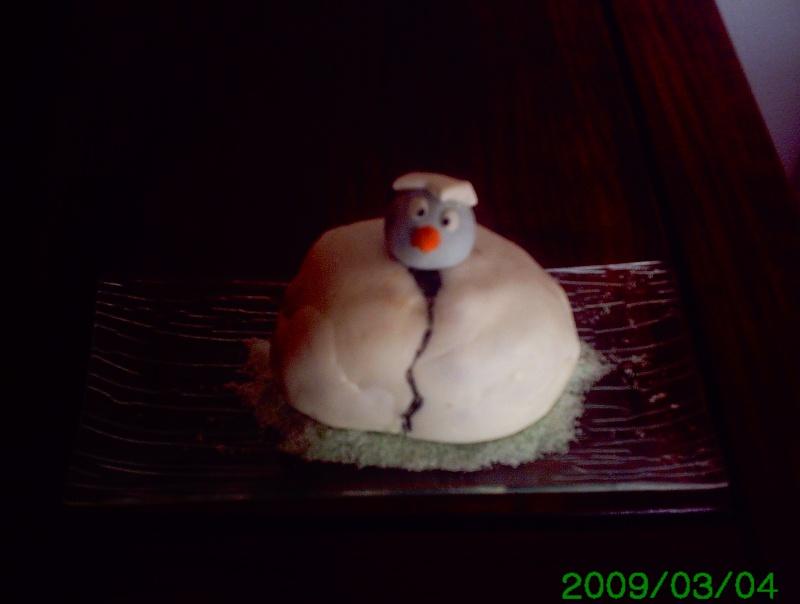 Mars 2009 : oiseaux Poussi10