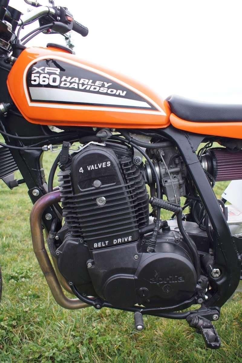 Harley- Davidson 560 XR Dirt Track Harley17