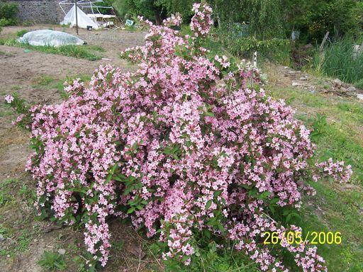 mes echanges Fleurs55