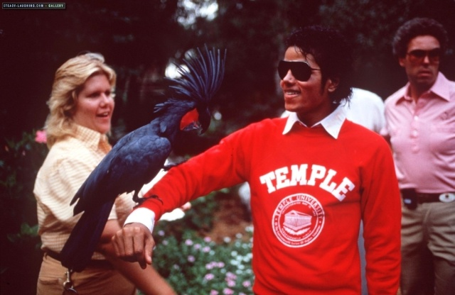 Collection MJ-Story : Michael et les animaux ^^ - Page 6 45jikj10