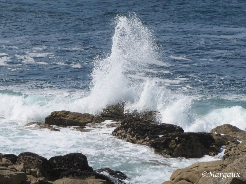 La Mer En_80017