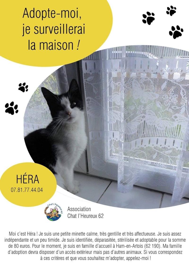 Héra, née en 2011 - Page 4 12823310