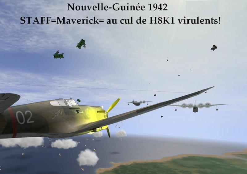 Campagne Nouvelle Guinée Mavmis10