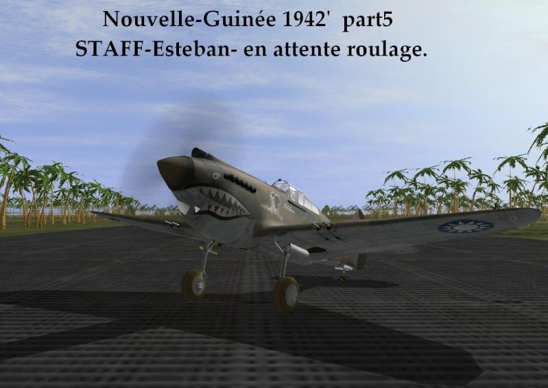 Nouvelle-Guinée part5 Ng5_110
