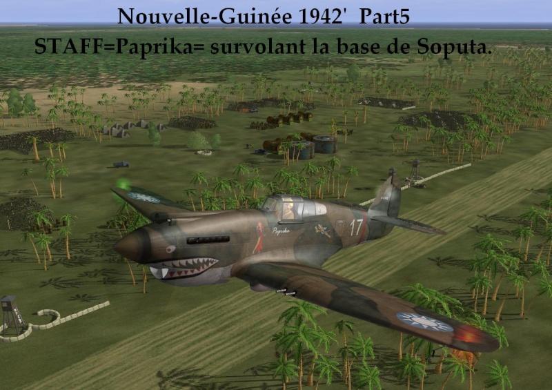 Nouvelle-Guinée part5 Ng5_210