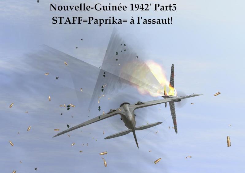 Nouvelle-Guinée part5 Ng5_510