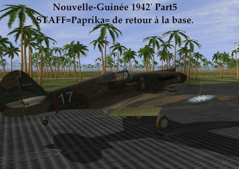 Nouvelle-Guinée part5 Ng5_810